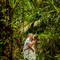 Hochzeitsfotograf_Seychellen_483