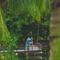 Hochzeitsfotograf_Seychellen_284