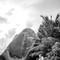 Hochzeitsfotograf_Seychellen_107