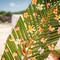 Hochzeitsfotograf_Seychellen_040