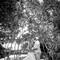 Hochzeitsfotograf_Seychellen_290