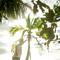 Hochzeitsfotograf_Seychellen_367