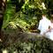 Hochzeit_Seychellen_197