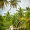 Hochzeit_Seychellen_152