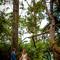 wedding_photographer_seychelles_194