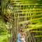 wedding_photographer_seychelles_192