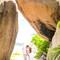 Hochzeit_Seychellen_259