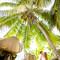 Hochzeit_Seychellen_338