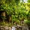 hochzeit_fotograf_seychellen_272