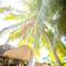 hochzeit_fotograf_seychellen_109