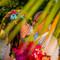 Hochzeitsfotograf_Sansibar_294