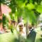 Hochzeitsfotograf_Hamburg_382