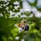 Hochzeitsfotograf_Hamburg_101