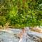 Hochzeitsfotograf_Seychellen_179