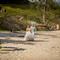 Hochzeitsfotograf_Seychellen_054
