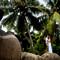 Hochzeit_Seychellen_309