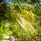 Hochzeit_Seychellen_031