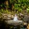 hochzeit_fotograf_seychellen_271