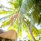hochzeit_fotograf_seychellen_107