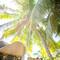 hochzeit_fotograf_seychellen_108