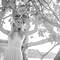 Hochzeitsfotograf_Seychellen_Sebastian_Muehlig_www.sebastianmuehlig.com_314
