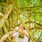 Hochzeitsfotograf_Seychellen_564