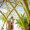 Hochzeitsfotograf_Seychellen_Sebastian_Muehlig_www.sebastianmuehlig.com_023