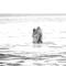 Hochzeitsfotograf_Seychellen_590