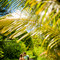 Hochzeit_Seychellen_030