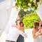 Hochzeit_Seychellen_153