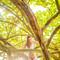 Hochzeitsfotograf_Seychellen_562