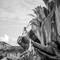 Hochzeitsfotograf_Seychellen_205