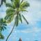 Hochzeitsfotograf_Seychellen_242
