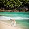 hochzeit_fotograf_seychellen_317