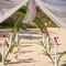 Hochzeitsfotograf_Seychellen_047